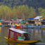 Shikara boat in Dal Lake, Kahsmir India