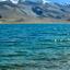 Tso Moriri lake in the foreground in Ladakh, India