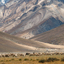 Herd of sheep against the background of distant colorful mountain,Zanskar valley, India
