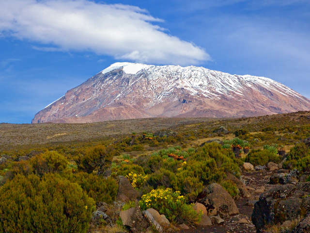 Everest or Kilimanjaro? Trekking Comparison