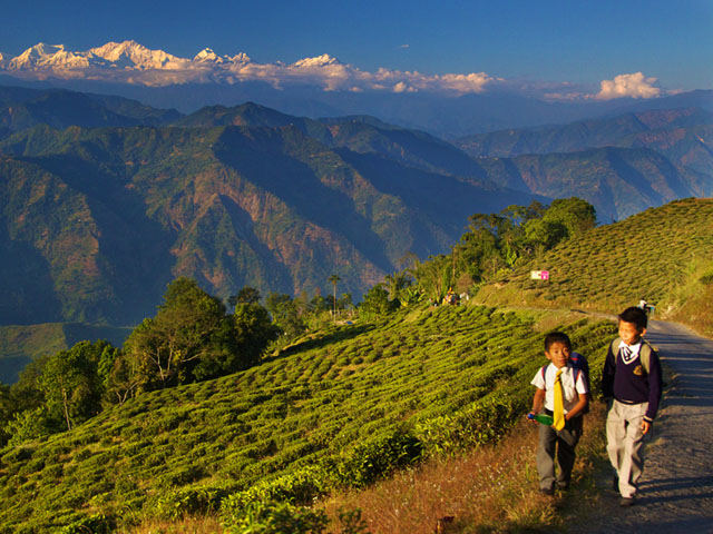 Kids in Darjeeling with Kangchenjunga in distance