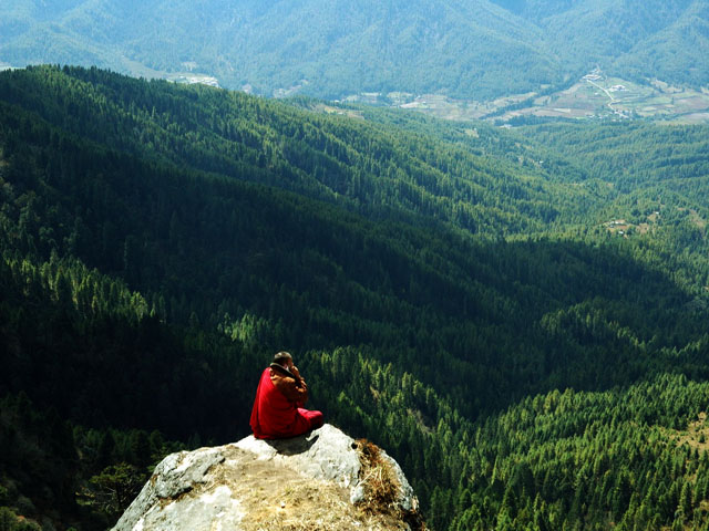 Bumthang Owl  Trek Forested Ridge